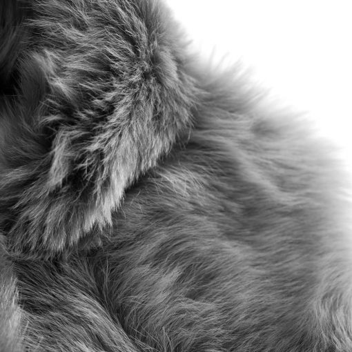Pale Grey Long Sheepskin Sheepskin Gilet
